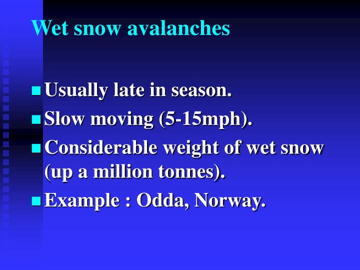 Wet snow avalanches