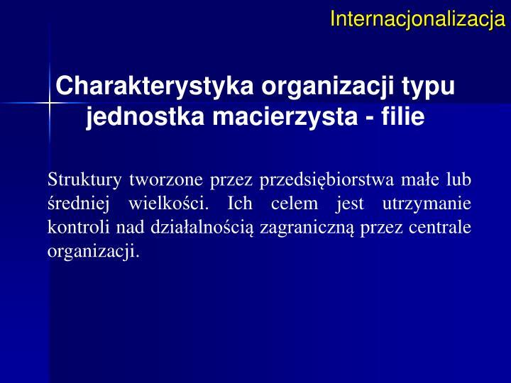 Internacjonalizacja