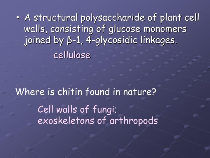 A structural polysaccharide of plant cell walls, consisting of glucose monomers joined by β-1, 4-glycosidic linkages.