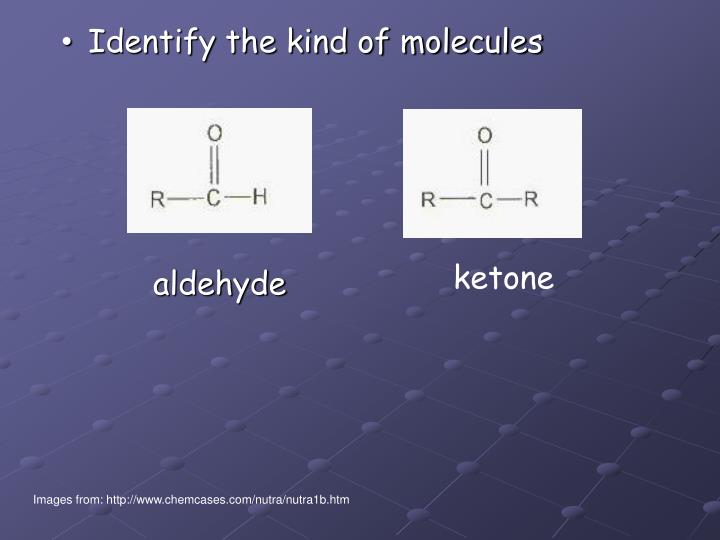 Identify the kind of molecules