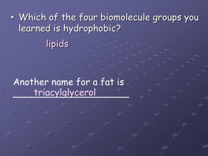 Which of the four biomolecule groups you learned is hydrophobic?