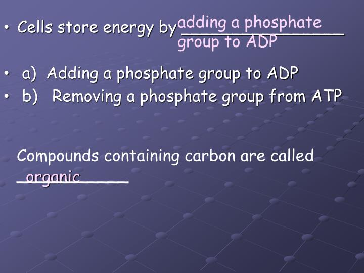 adding a phosphate group to ADP