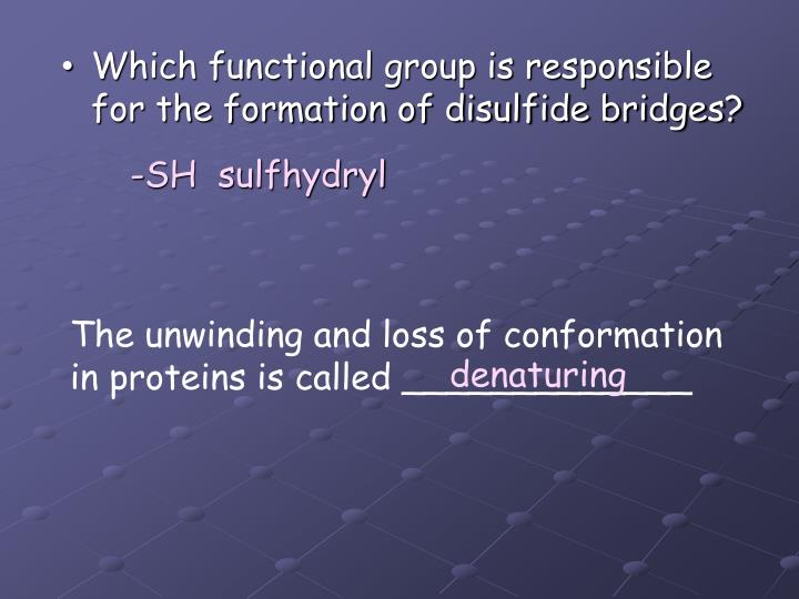 Which functional group is responsible for the formation of disulfide bridges?
