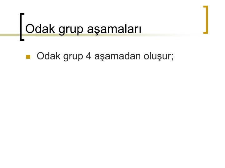 Odak grup aşamaları