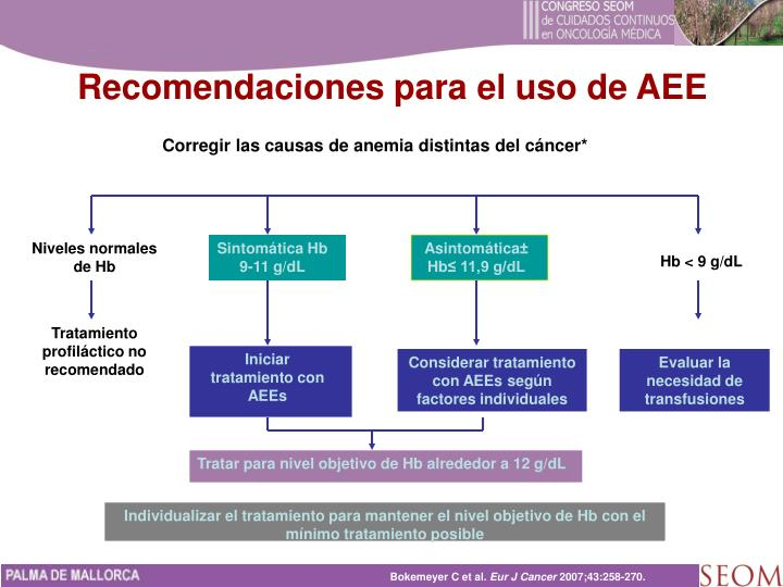 Recomendaciones para el uso de AEE