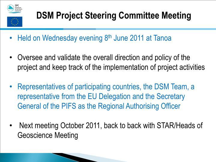 DSM Project Steering Committee Meeting