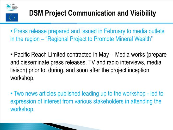 DSM Project Communication and Visibility