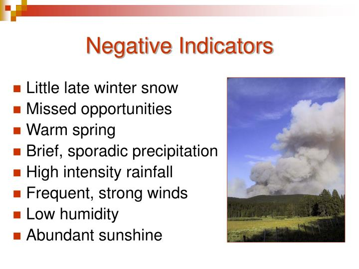 Negative Indicators
