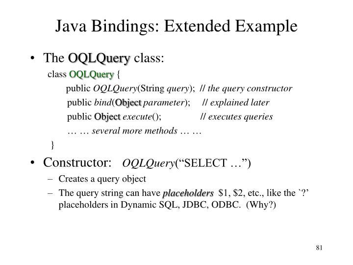 Java Bindings: Extended Example