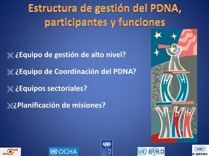 Estructura de gestión del PDNA, participantes y funciones