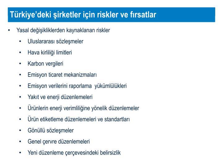 Türkiye'deki şirketler için riskler ve fırsatlar