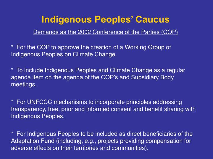 Indigenous Peoples' Caucus