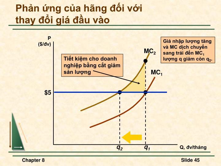 Giá nhập lượng tăng
