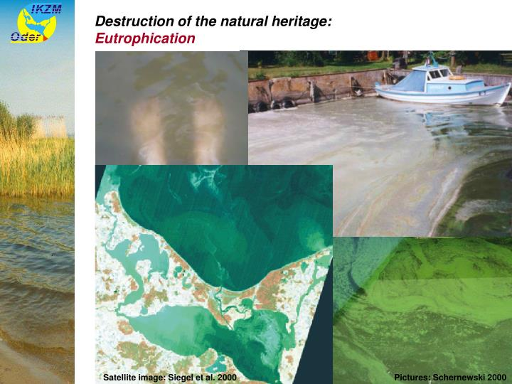 Destruction of the natural heritage: