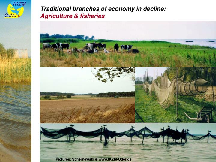 Traditional branches of economy in decline: