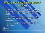 what if the network goes wrong auditing