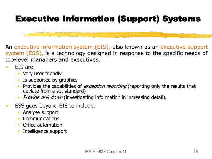Executive Information (Support) Systems