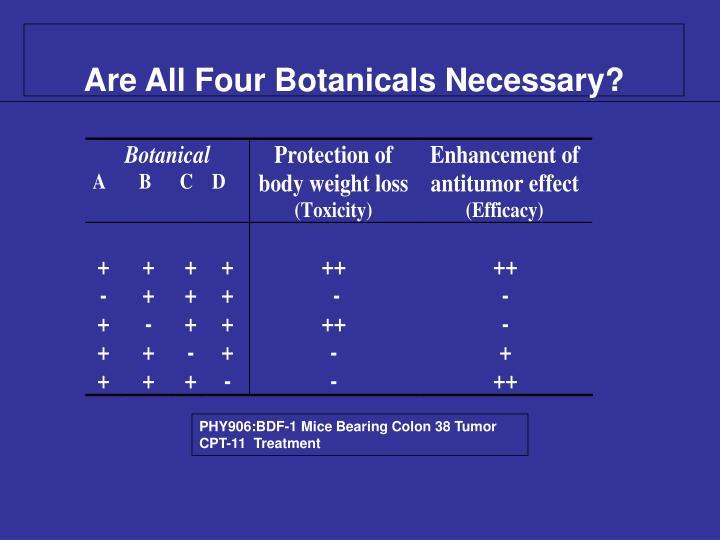 Are All Four Botanicals Necessary?