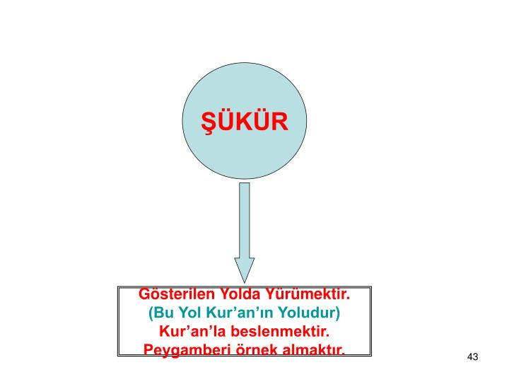 ŞÜKÜR