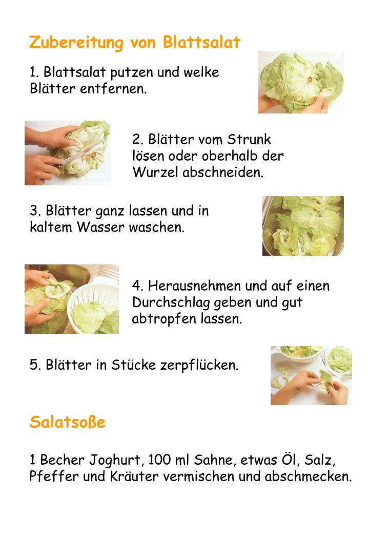 Zubereitung von Blattsalat