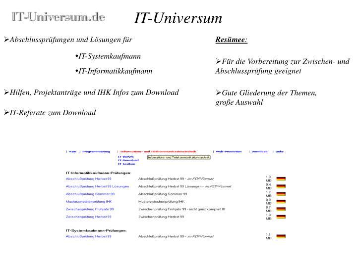 IT-Universum