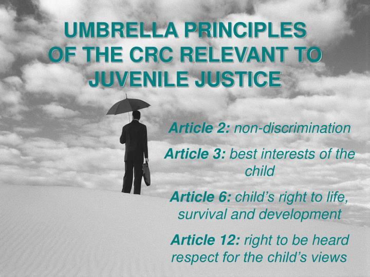 UMBRELLA PRINCIPLES