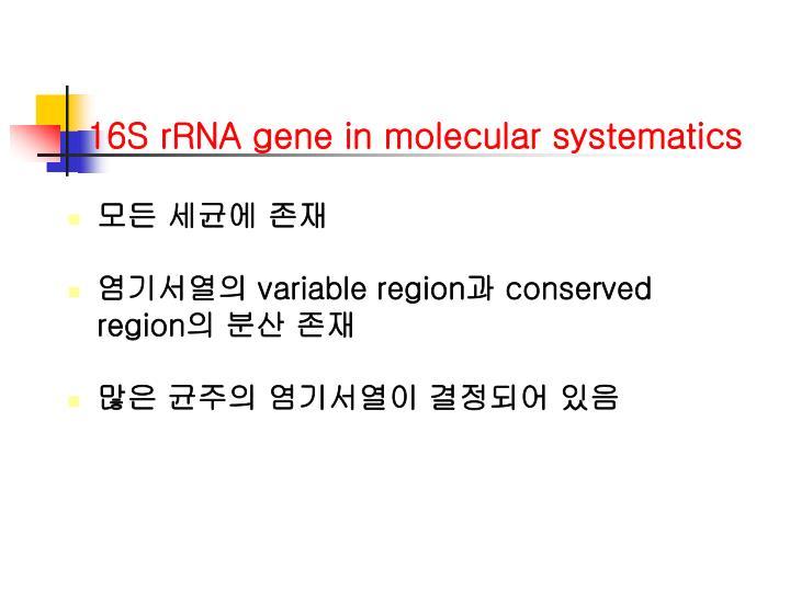 16S rRNA gene in molecular systematics