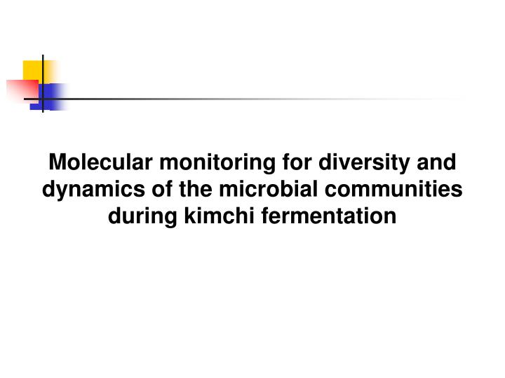 Molecular monitoring for diversity and dynamics of the microbial communities during kimchi fermentation