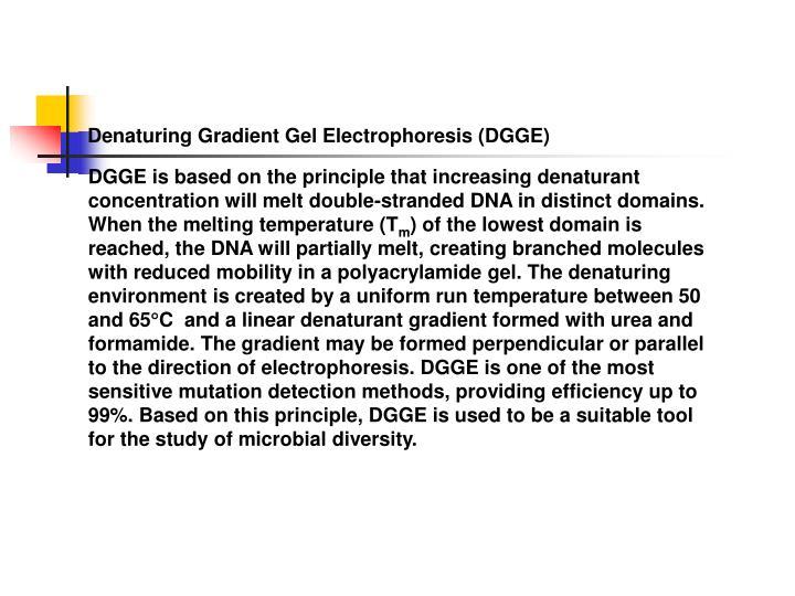 Denaturing Gradient Gel Electrophoresis (DGGE)