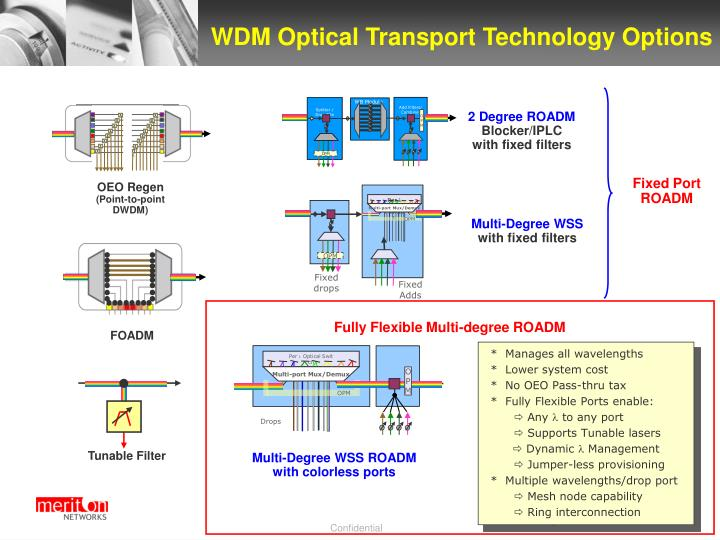 WDM Optical Transport Technology Options