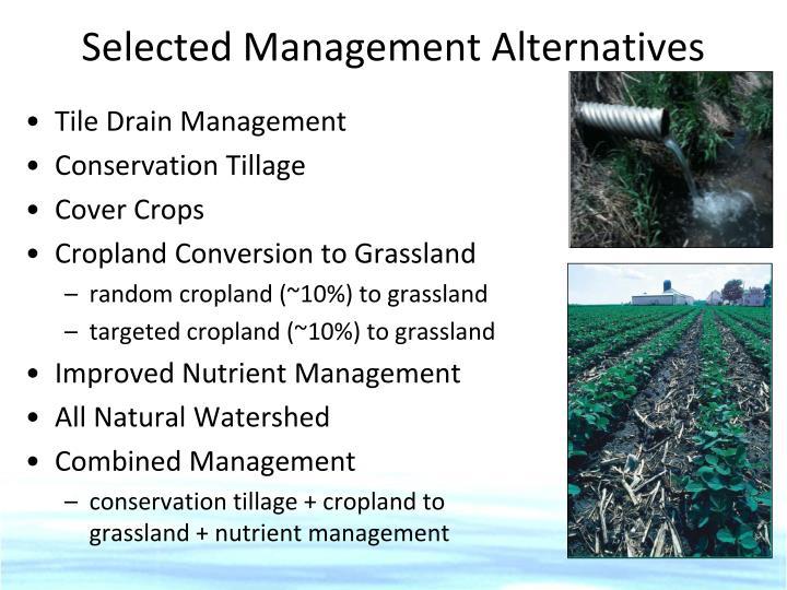 Selected Management Alternatives