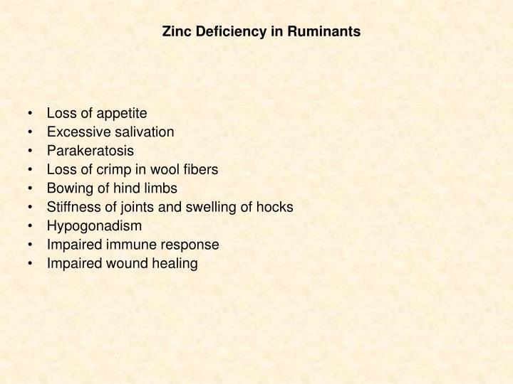 Zinc Deficiency in Ruminants