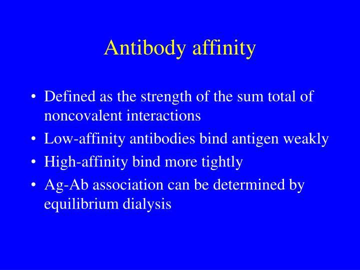 Antibody affinity