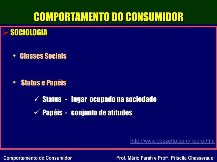 COMPORTAMENTO DO CONSUMIDOR