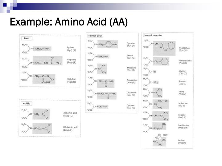 Example: Amino Acid (AA)
