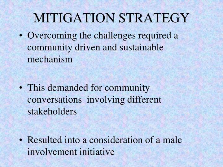 MITIGATION STRATEGY