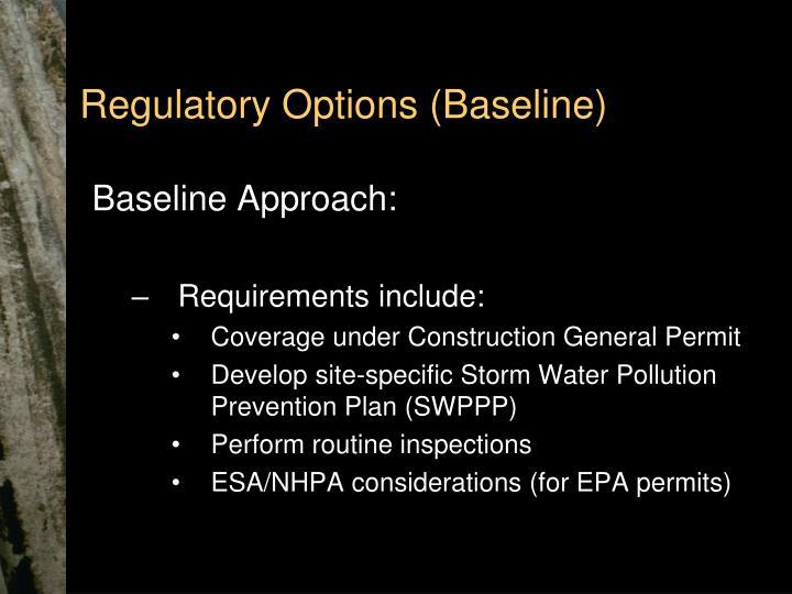 Regulatory Options (Baseline)