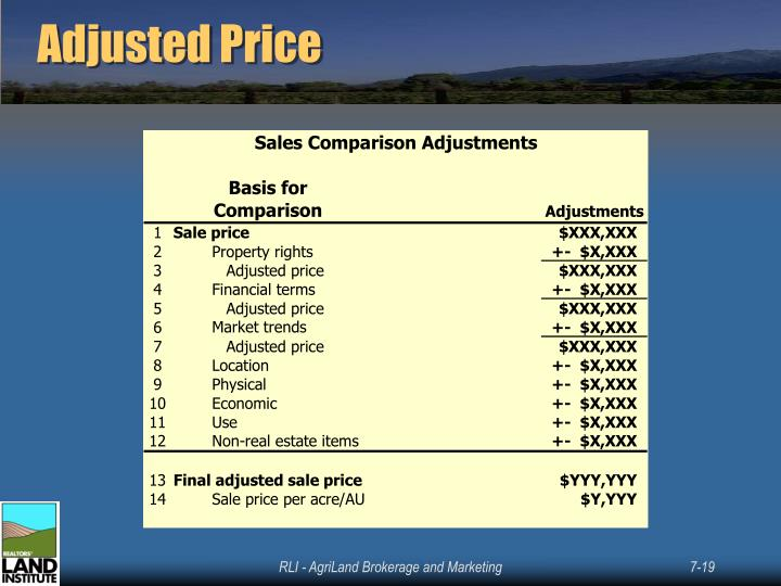 Adjusted Price
