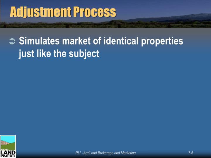Adjustment Process