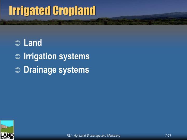 Irrigated Cropland