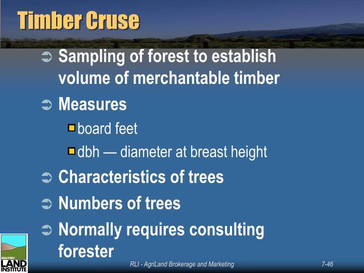 Timber Cruse