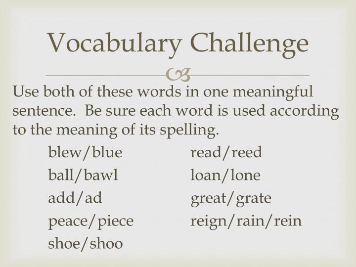 Vocabulary Challenge