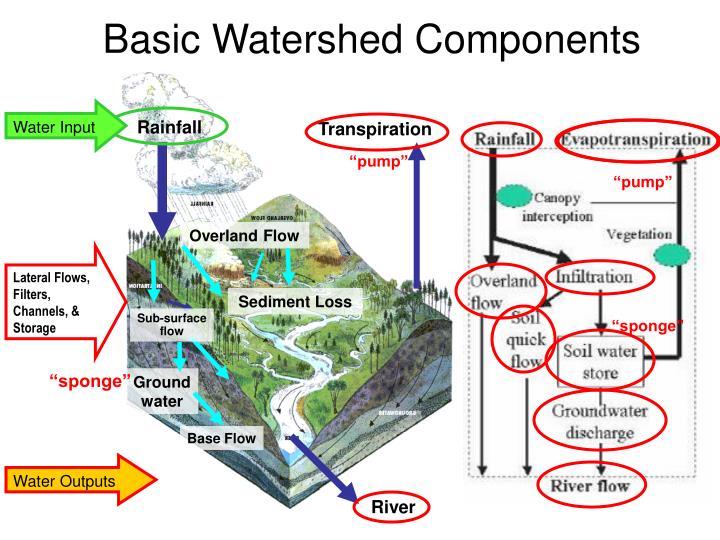 Water Input