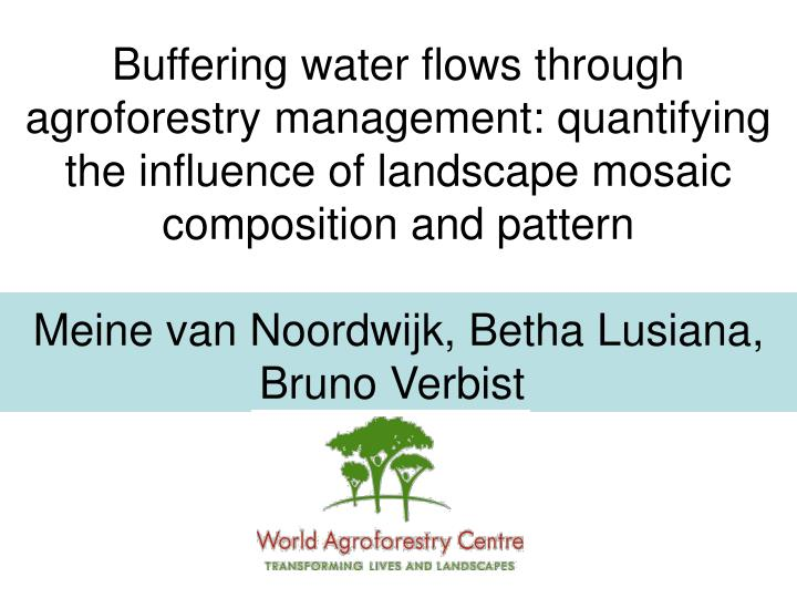 Buffering water flows through agroforestry management: quantifying the influence of landscape mosaic composition and pattern
