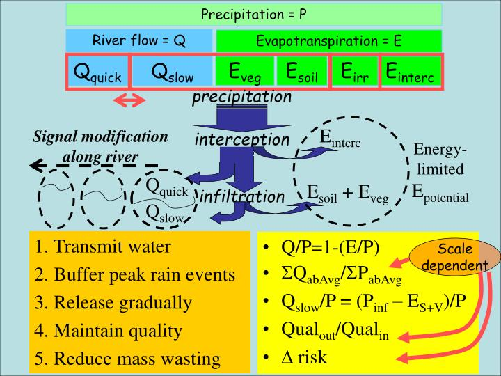 Precipitation = P