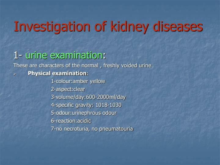 Investigation of kidney diseases