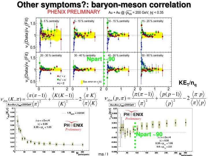 Other symptoms?: baryon-meson correlation