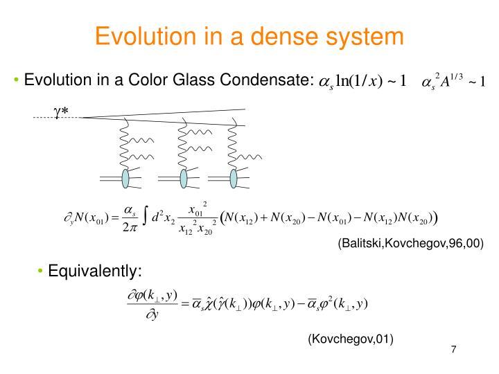 Evolution in a dense system