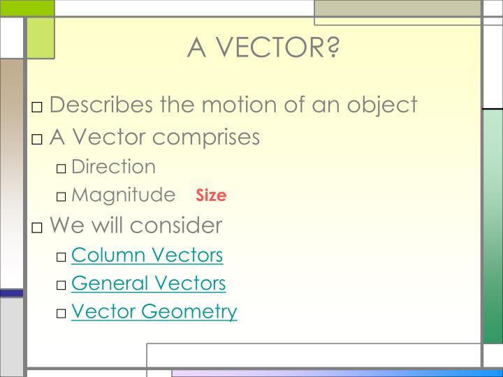 A VECTOR?