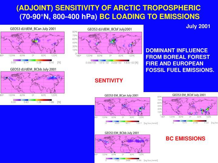 (ADJOINT) SENSITIVITY OF ARCTIC TROPOSPHERIC